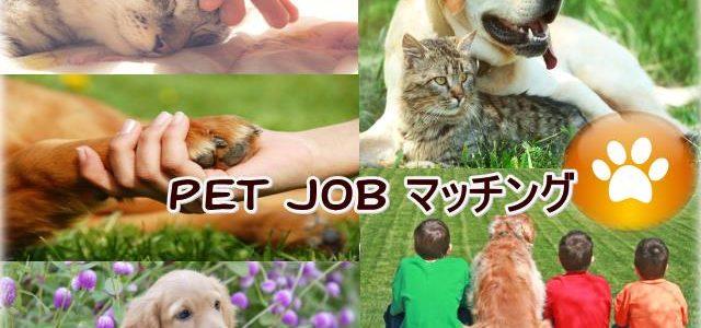 第1回PET JOB 交流会のご案内
